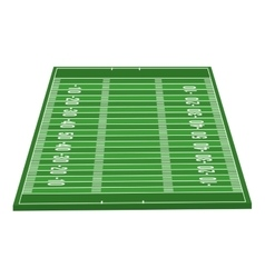 American football field isolated icon vector