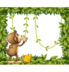 A monkey with banana and the green frame vector