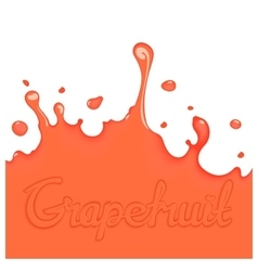 Grapefruit juice splash vector