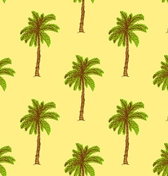 Sketch palm in vintage style vector