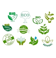 Bio eco and natural products green symbols vector