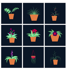 Assembly flat icons houseplants vector