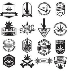 Cannabis2 vector