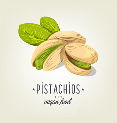 pistachios icon isolated on background vector image vector image