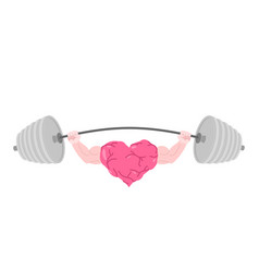Strong heart and barbell fitness love isolated vector