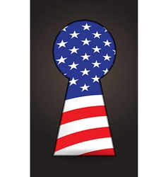 Us flag keyhole vector