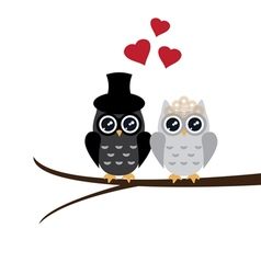 Owl wedding vector