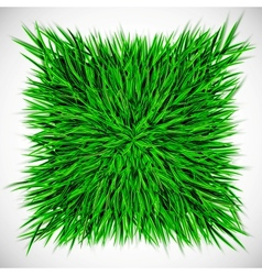 Background with square of grass vector