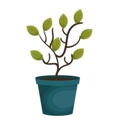 plant garden pot icon vector image