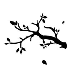 Branch vector