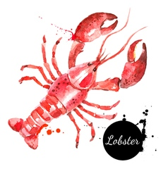 Watercolor hand drawn lobster Isolated fresh vector image