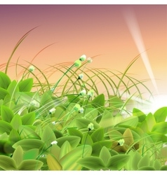 Green goose grass vector