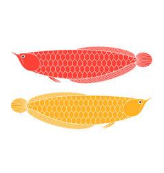 dragon fish vector image
