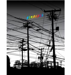 electricity birds vector image