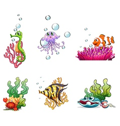 Different sea creatures vector image