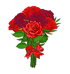 Bunch of red rose flowers tied with scarlet ribbon vector