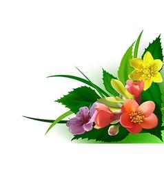 Flowers Corner vector image vector image