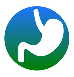 Human anatomy stomach white icon in vector
