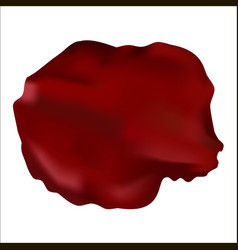 red rose petals isolated on white vector image