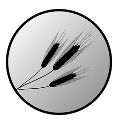 Wheat button vector image