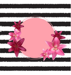 abstract frame with lily flower natural vector image vector image