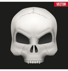Creative human skull vector