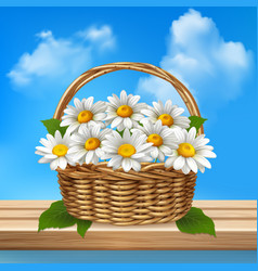 daisy realistic colored composition vector image vector image