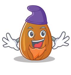 Elf almond nut character cartoon vector