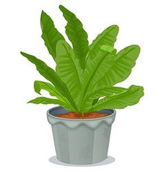 A plant inside a gray pot vector image