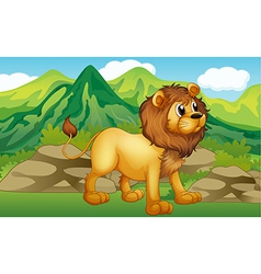 A lion in a mountain scenery vector image vector image