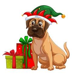 Dog and christmas presents vector image