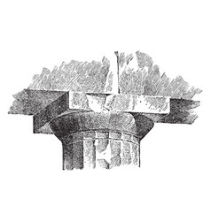 Echinus molding a capital of the parthenon vector