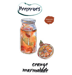 Orange marmalade watercolor vector