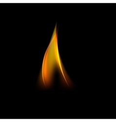 Unique fire flame vector image