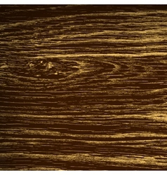 Dark Oak Texture vector image