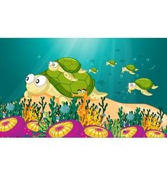 tortoise in water vector image