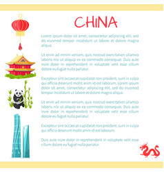China card with text information and elements vector