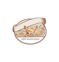 Hen Running Open Range Eggs Oval Drawing vector image