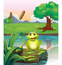A frog at the lake vector image vector image