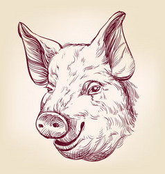 Pig hand drawn llustration realistic sketch vector
