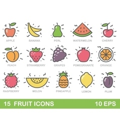 Stylized of fruit icons vector image