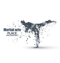 Silhouette of a karateka doing standing side kick vector image vector image