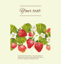 Strawberry horizontal banner vector image vector image