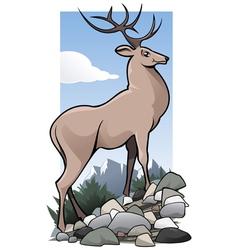 wild deer vector image vector image