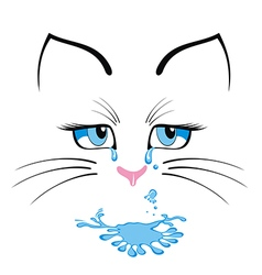Cat cartoon character vector image