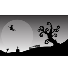 Witch flying halloween backgrounds vector image