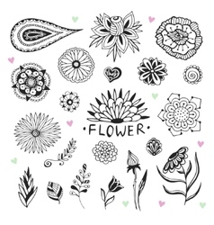 flowers collection in zentangle style Hand vector image