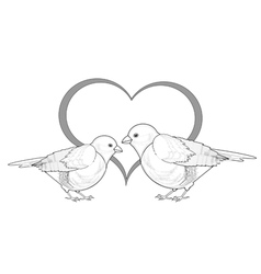 A monochrome sketch of birds with a heart vector image vector image