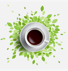 Coffee and green leaves vector