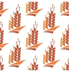 Seamless pattern of wheat rye and barley vector